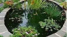 Bassin D Eau Pour Jardin