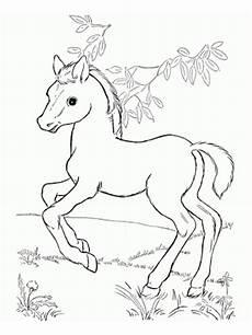 Pferde Ausmalbilder Spirit Ausmalbilder Pferde Turnier