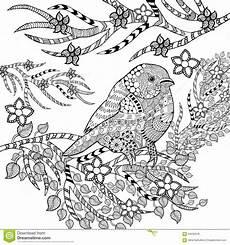Ausmalbilder Erwachsene Vogel Zentangle Stilisierte Tropischen Vogel Im Blumengarten