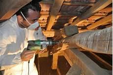 traitement des bois de charpente entretien et r 233 novation de toiture l essentiel 224 savoir