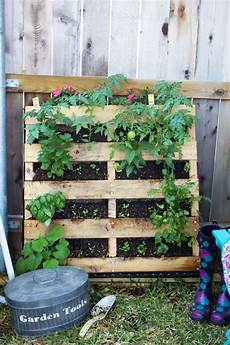 palette potager vertical how to make your own vertical pallet vegetable herb garden