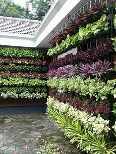 vertical garden at rs 650 square feet वर ट कल ग र डन km corporation ernakulam id