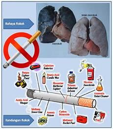 Kandungan Dan Bahaya Asap Rokok Prinzessinbouvet