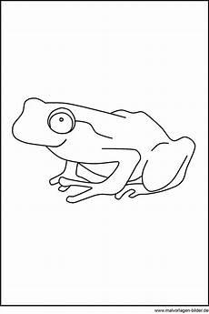 Malvorlage Frosch Gratis Frosch Als Malvorlagen Zum Ausdrucken Und Ausmalen