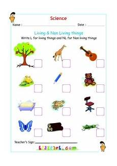 science worksheets living and nonliving things 12103 science activity sheets kidzpark