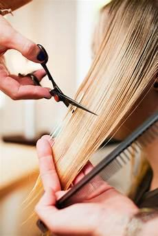 hair cutting style photos 9 common hair care myths hair care tips