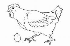 Malvorlage Huhn Einfach Ausmalbilder Huhn Kostenlos Malvorlagen Zum Ausdrucken