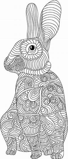 animal the animal coloring book 50 cool design colouring best for adult stress relief kindle