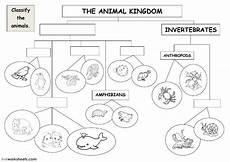 the animal kingdom classification diagram ficha interactiva
