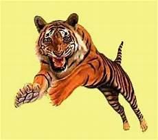 Collection Image Wallpaper Harimau Animasi 3d