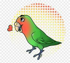 Gambar Burung Lovebird Kartun Gambar Burung
