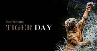 The International Tiger Day29 July