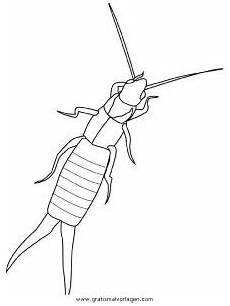 Malvorlagen Insekten In Insekten 09 Gratis Malvorlage In Insekten Tiere Ausmalen