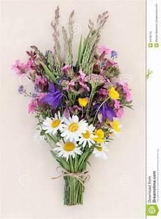petit bouquet de fleur sauvage d 233 t 233 photo stock image
