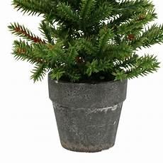 Tannenbaum Im Topf Gr 252 N 23cm Preiswert Kaufen