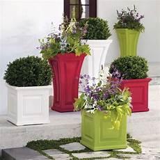 vasi colorati per piante vasi on line vasi per piante acquistare vasi