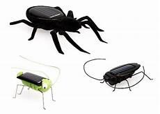 Malvorlagen Insekten Spielen Vireo Solar Spielzeug Set Insekten Avocadostore