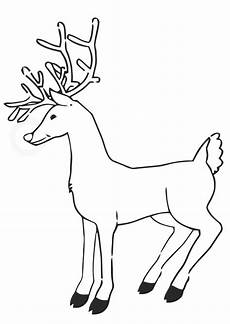 coloring page reindeer free printable coloring pages