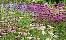 staudenbeete in violett garden ideas garden