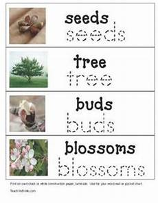measurement worksheets 1460 measuring bug inches worksheets and math