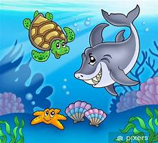 malvorlagen unterwasser tiere um fototapete tiere unterwasser pixers 174 wir leben