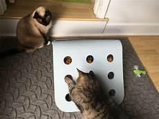 Ikea Hack Diy Food Puzzle For Cats Fundamentally Feline