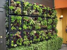 To Plant Vertical Garden by Vertical Garden Ideas Of 25 Creative Ways To Plant A