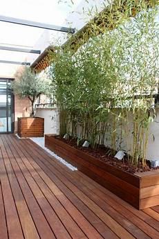 Sichtschutz Terrasse Pflanzkübel - sichtschutz pflanzk 252 bel sichtsch 252 tze k 246 nnen auch