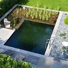 Garten Pool Selber Bauen - gestaltungsideen bilder schwimmteich naturpool