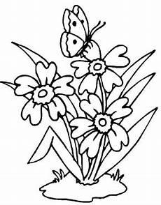 Malvorlage Schmetterling Mit Blume Blume Mit Schmetterling