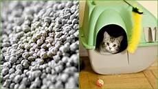 Feuchtigkeit Im Auto Katzenstreu - so vielseitig kannst du katzenstreu im haushalt einsetzen