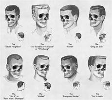 eight haircuts the skeleton