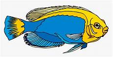 Gambar Ikan Hias Kartun Kulo