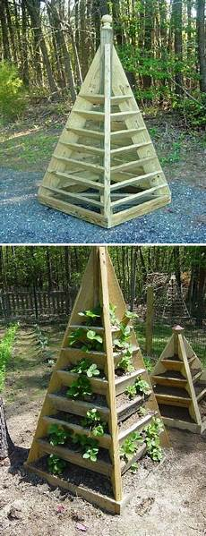 41 best staking tomatoes images pinterest tomato