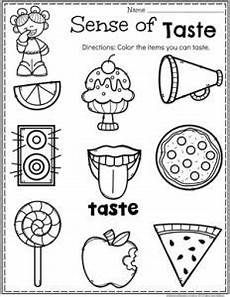 5 senses worksheets tasting 12611 5 senses planning playtime