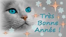 carte de vœux bonne 233 e 2020 chats chatons