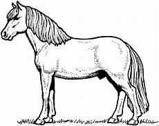 Malvorlage Liegendes Pferd Stehendes Pferd Seitlich Ausmalbild Malvorlage Tiere