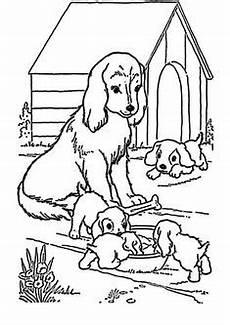 Ausmalbilder Hunde Welpen 13 Best Ausmalbilder Hunde Images Coloring Page