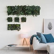 Plant Island Wall Frame Three Pack By Grattify
