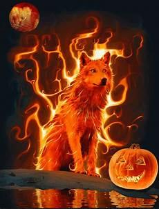 Orange Wolf Wallpaper