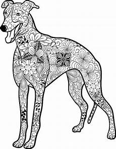 top greyhound clip vector graphics and illustrations