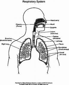 Askep Asuhan Keperawatan Dengan Bronchopneumonia