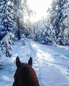 winter vacations montana vacations horseback winter travel destinations montana