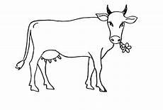 ausmalbilder zum drucken malvorlage kuh kostenlos 5