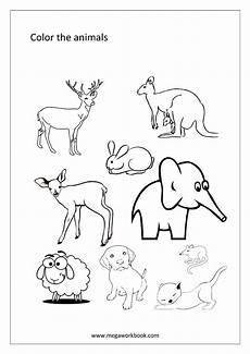 animal colouring worksheets 13824 free coloring sheets miscellaneous megaworkbook
