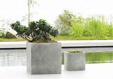 pflanzgefäße aus beton selber machen wie beton pflanzk 252 bel selber machen kann diese