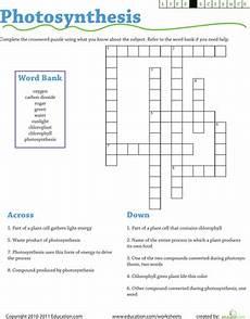 photosynthesis crossword worksheet life science crossword photosynthesis worksheet