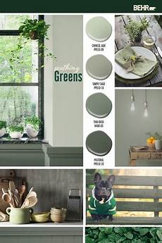 colorfully behr soothing greens