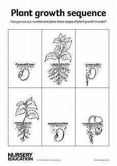 plants sequencing worksheets 13629 17 best images about 2015 vgg renaissance italy on time lapse photography