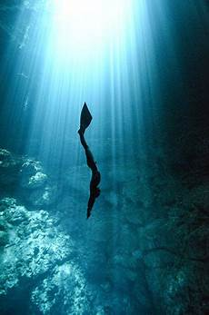 freediving the magic of exploring the ocean a single breath ocean chion and explore